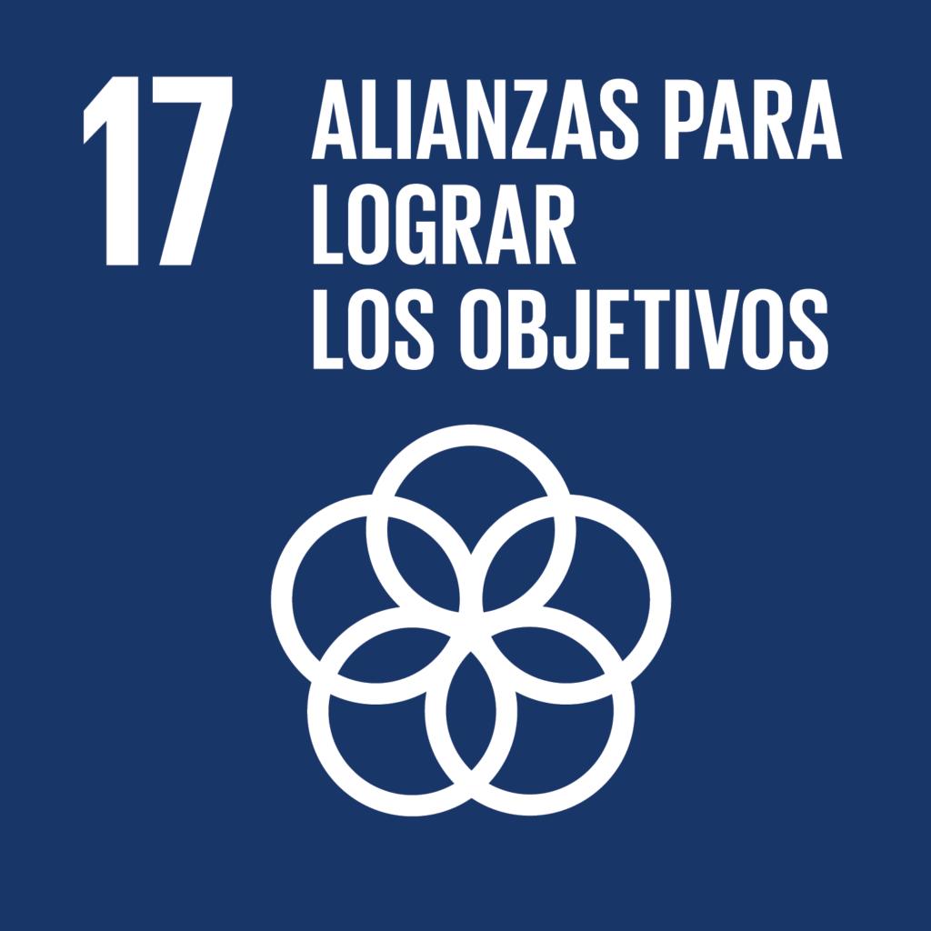 ODS 17 Perú